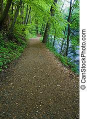 trilha hiking, por, a, rio