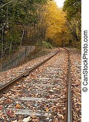 trilhas estrada ferro, outono