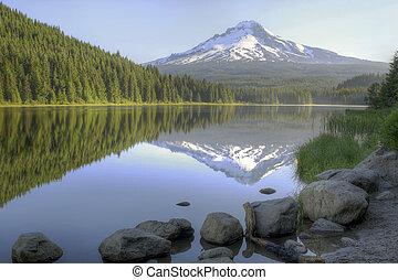 trillium, 爬升, 反映, 兜帽, 湖