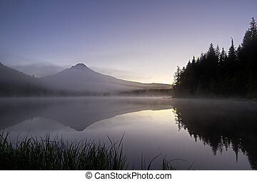 trillium, 雾, 湖, 日出, 早晨