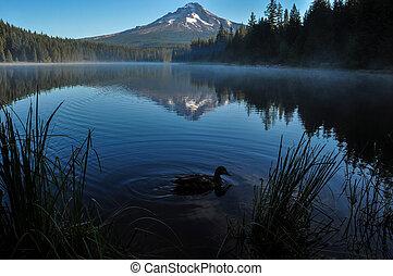 trillium tó, kora reggel, noha, felmegy gengszter, oregon, usa