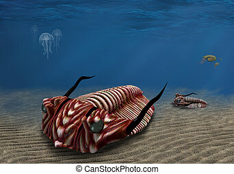 Trilobite - Prehistoric trilobite scavenging on the ocean...