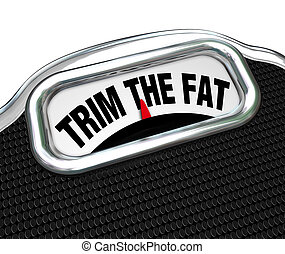 Trim the Fat Words on Scale Cut Costs Budget - The words...