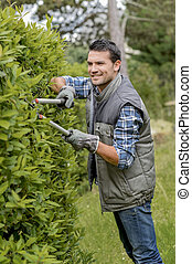 Triming the hedge