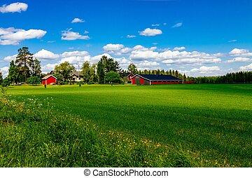 trimma, blå, lantgård logera, finland, sky, traditionell, beta, vit, öppna, röd ladugård