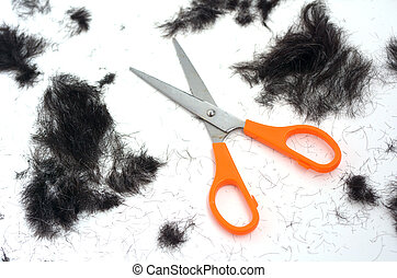 Trimmed hair on the floor with scissors.fashion concept