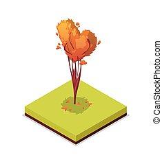 Trimmed tree isometric 3D icon. Public park decorative plant...