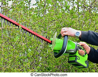 Trimming a Hedge