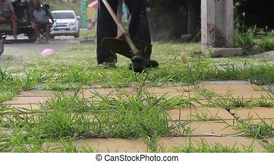 Trimming Grass. Grass cutting service.