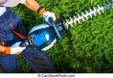 Trimming Time. Gardener with His Gasoline Hedge Trimmer in...