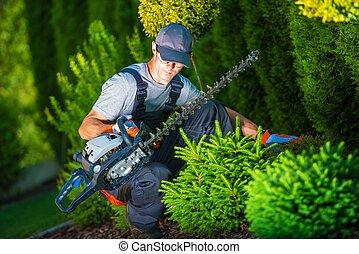 Trimming Work in a Garden