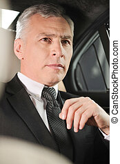 trip., business, séance, voiture, siège arrière, confiant, homme affaires, personne agee