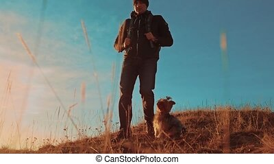 trip., montagnes, marche, silhouette, randonnée, voyage, hommes, deux, chien, randonneurs, teamwork., coucher soleil, aventure, aller, style de vie, sacs dos, touristes