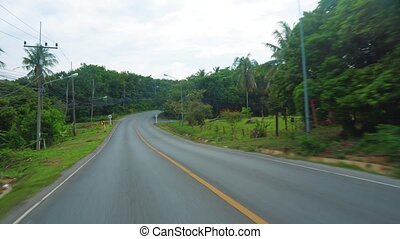 trip on an asphalt road, driving a car or motorcycle, forest along the road, travel and tourism on vacation