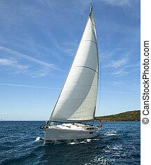 trip., romantique, navigation yacht, race., océan, luxe, regatta.