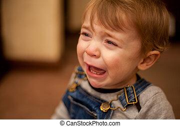 triste, menino bebê, chorando, casa
