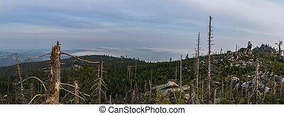 tristolicnik., národnostní, kopyto, německo, sumava, bavorák, republika, les, kopec, daleký, názor, panoramatický, sad, čech, mlha