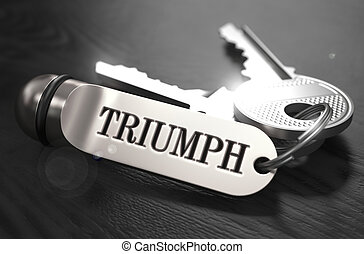 Triumph Concept. Keys with Keyring.