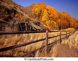 Triumph - Site of old mining town near Ketchum Idaho