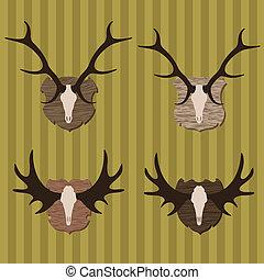 trofeo, alce, caccia, cervo, illustrazione, collezione,...