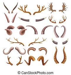 trofeos, cuernos, colección, animales, colorido, caza