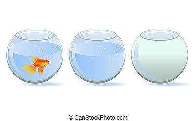trois, aquariums