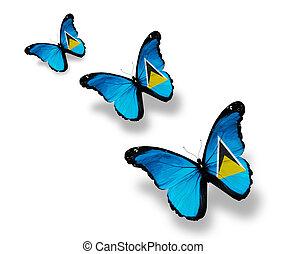 trois, lucia saint, drapeau, papillons, isolé, blanc