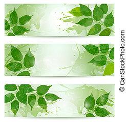 trois, nature, fond, à, vert, printemps, leaves., vecteur,...