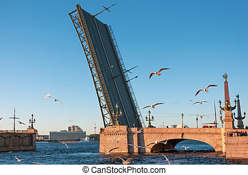 Troitskiy bridge in St. Petersburg on sunset, and a flock of flying seagulls by the river.