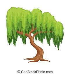 tronco, sauce, árbol verde, vector, ilustración, follaje, ...