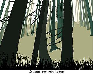 troncos, de, conífero, árboles.