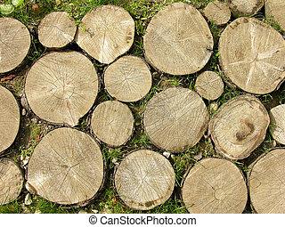 troncos, plano de fondo