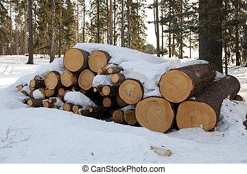 troncs arbre, scierie, image, horizontal