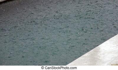 tropfen, von, a, tropische , regenfall, in, wasser