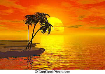 tropic, 日没