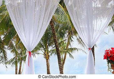 tropic, 窓の眺め, リゾート