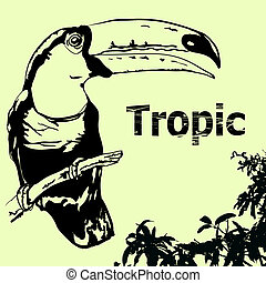 tropic-2 - Tropic background Tukan