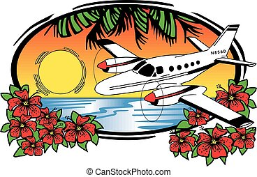 Tropic air Charter - private exectutive twin engine airplane...