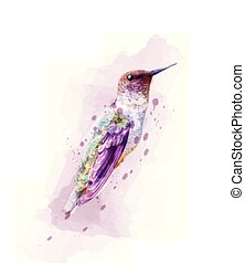 Tropic colorful bird watercolor Vector. isolated on white illustrations