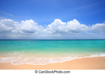 tropic island - The beach of tropical Island of Philippines.