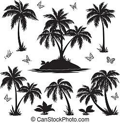 tropicais, borboletas, silhuetas, palmas, ilha