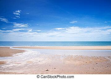 tropicais, ensolarado, day., praia branca, arenoso