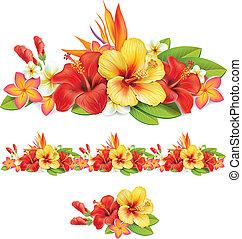 tropicais, flores, guirlanda