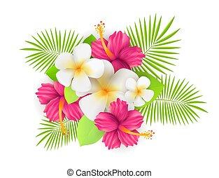 tropicais, folhas, flores