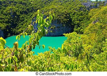 tropicais, ladre ilha, com, recursos, férias, fundo