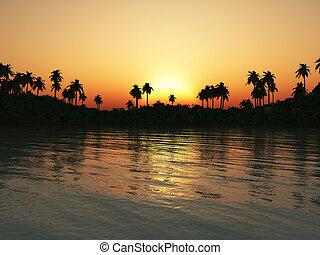 tropicais, lagoa, em, sunset.