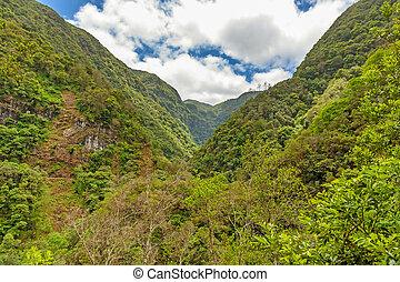tropicais, meio ambiente