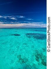 tropicais, oceânicos, com, céu azul, com, vibrante, oceânicos, cores