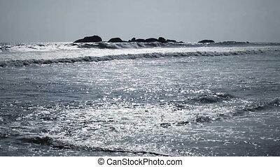 tropicais, oceânicos, costa