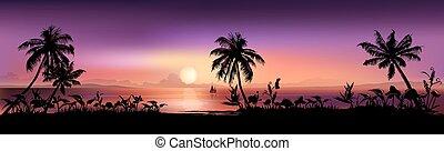 tropicais, pôr do sol, fundo